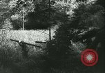 Image of Battle of France France, 1940, second 37 stock footage video 65675021753