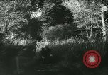 Image of Battle of France France, 1940, second 45 stock footage video 65675021753