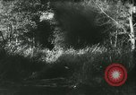 Image of Battle of France France, 1940, second 46 stock footage video 65675021753
