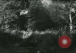 Image of Battle of France France, 1940, second 48 stock footage video 65675021753