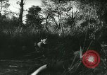 Image of Battle of France France, 1940, second 49 stock footage video 65675021753