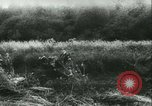 Image of Battle of France France, 1940, second 16 stock footage video 65675021754