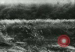 Image of Battle of France France, 1940, second 17 stock footage video 65675021754