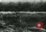 Image of Battle of France France, 1940, second 18 stock footage video 65675021754