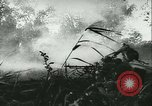 Image of Battle of France France, 1940, second 29 stock footage video 65675021754