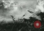 Image of Battle of France France, 1940, second 30 stock footage video 65675021754