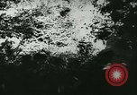 Image of Battle of France France, 1940, second 44 stock footage video 65675021754
