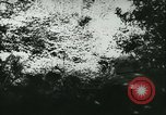 Image of Battle of France France, 1940, second 46 stock footage video 65675021754