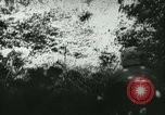 Image of Battle of France France, 1940, second 47 stock footage video 65675021754