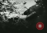 Image of Battle of France France, 1940, second 48 stock footage video 65675021754