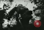 Image of Battle of France France, 1940, second 50 stock footage video 65675021754