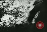 Image of Battle of France France, 1940, second 51 stock footage video 65675021754