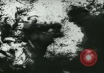 Image of Battle of France France, 1940, second 53 stock footage video 65675021754