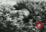Image of Battle of France France, 1940, second 57 stock footage video 65675021754