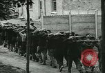 Image of Vichy Freance militia France, 1944, second 21 stock footage video 65675021775