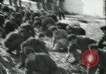Image of Hungarian Mine sapper engineer soldiers Hungary, 1942, second 14 stock footage video 65675021781