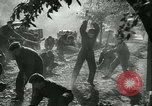 Image of Hungarian Mine sapper engineer soldiers Hungary, 1942, second 20 stock footage video 65675021781