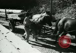 Image of Hungarian Mine sapper engineer soldiers Hungary, 1942, second 42 stock footage video 65675021781