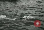 Image of Swimming meet in Barcelona Barcelona Spain, 1942, second 11 stock footage video 65675021790