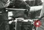 Image of Allied aircraft Caen France, 1944, second 48 stock footage video 65675021808