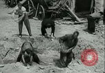 Image of German Coastal Defenses at English Channel Western Front, 1941, second 50 stock footage video 65675021852