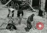 Image of German Coastal Defenses at English Channel Western Front, 1941, second 51 stock footage video 65675021852