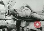Image of World War II Europe, 1942, second 8 stock footage video 65675021867