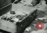 Image of Allied forces France, 1944, second 40 stock footage video 65675021889