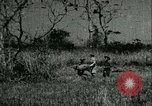 Image of Office of Strategic Services Burma, 1943, second 3 stock footage video 65675021895