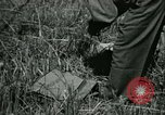 Image of Office of Strategic Services Burma, 1943, second 14 stock footage video 65675021895