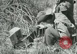 Image of Office of Strategic Services Burma, 1943, second 25 stock footage video 65675021895