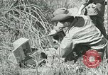 Image of Office of Strategic Services Burma, 1943, second 27 stock footage video 65675021895