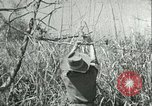 Image of Office of Strategic Services Burma, 1943, second 39 stock footage video 65675021895