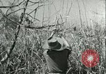 Image of Office of Strategic Services Burma, 1943, second 40 stock footage video 65675021895