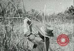 Image of Office of Strategic Services Burma, 1943, second 42 stock footage video 65675021895