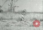 Image of Office of Strategic Services Burma, 1943, second 47 stock footage video 65675021895