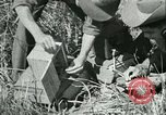 Image of Office of Strategic Services Burma, 1943, second 48 stock footage video 65675021895