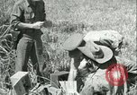 Image of Office of Strategic Services Burma, 1943, second 53 stock footage video 65675021895