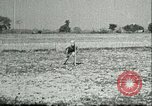 Image of Office of Strategic Services Burma, 1943, second 16 stock footage video 65675021897
