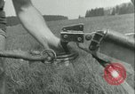 Image of Hitler Youth Germany, 1940, second 18 stock footage video 65675021926