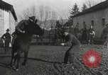 Image of United States troops rodeo France, 1918, second 39 stock footage video 65675021964