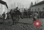 Image of United States troops rodeo France, 1918, second 42 stock footage video 65675021964