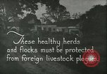 Image of foot and mouth disease United States USA, 1925, second 2 stock footage video 65675022112