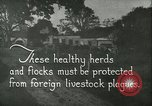 Image of foot and mouth disease United States USA, 1925, second 4 stock footage video 65675022112