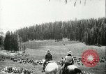 Image of foot and mouth disease United States USA, 1925, second 17 stock footage video 65675022112