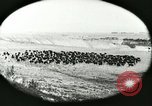 Image of foot and mouth disease United States USA, 1925, second 23 stock footage video 65675022112