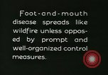 Image of foot and mouth disease United States USA, 1925, second 56 stock footage video 65675022112