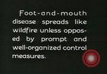 Image of foot and mouth disease United States USA, 1925, second 58 stock footage video 65675022112