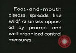 Image of foot and mouth disease United States USA, 1925, second 61 stock footage video 65675022112