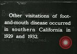 Image of foot and mouth disease United States USA, 1925, second 40 stock footage video 65675022116